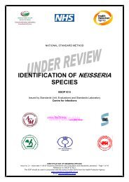 IDENTIFICATION OF NEISSERIA SPECIES