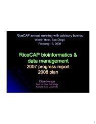 RiceCAP bioinformatics & data management