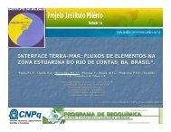 M.C. Bernardes - Instituto do Milênio Estuários