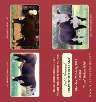 3rd Annual - Truro Herefords
