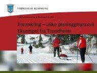 Forankring – ulike planleggingsnivå Eksempel fra Trondheim
