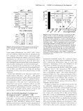 Fibroblast Growth Factor Receptor-1 Is Essential for In Vitro ... - Page 4