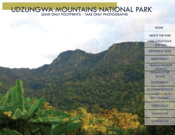 UDZUNGWA MOUNTAINS NATIONAL PARK - Stuckeman