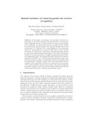 Spatial statistics of visual keypoints for texture recognition - Mistis