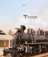 Tren crucero - Abordo.com.ec