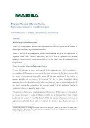 Programa Marca de Liderazgo Masisa. - Consejo Empresario ...