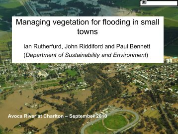Managing vegetation to protect small towns from floods