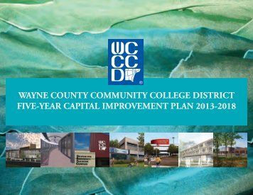 Five-Year Capital Improvement Plan 2013-2018 - Wayne County ...