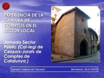 Sector Público de Navarra - Col·legi de Censors Jurats de Comptes ...