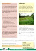 Ponds - The Chilterns - Page 2