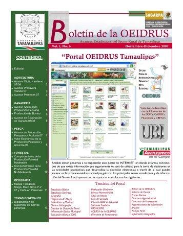 Vol. I No. 6 Noviembre-Diciembre 2007 - Portal OEIDRUS