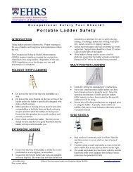 Portable Ladder Safety - Environmental Health & Radiation Safety