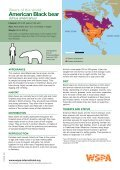 American Black bear - WSPA - Page 2