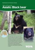 American Black bear - WSPA - Page 3