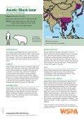 American Black bear - WSPA - Page 4