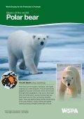 American Black bear - WSPA - Page 7