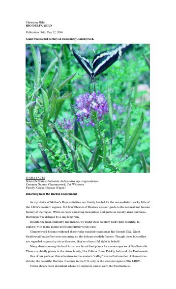 "Polanisia dodecandra.pdf - Christina Mild's ""Rio Delta Wild"""