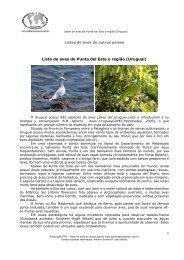 Conhecendo a aves de Punta del Este-UR - A Última Arca de Noé