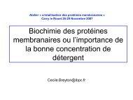 Cécile Breyton – Biochimie des protéines membranaires - LISM