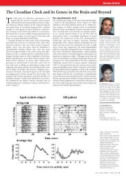The Circadian Clock and its Genes - ACNR
