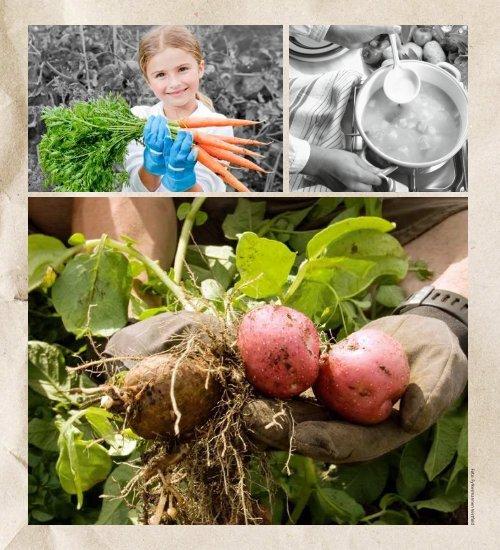 Bama_økologiske Vestfold 20