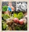 Bama_økologiske Vestfold 20 - Page 2