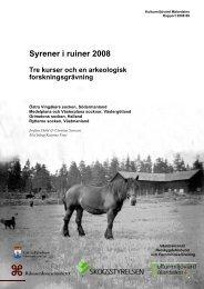Syrener i ruiner 2008 - Stiftelsen Kulturmiljövård