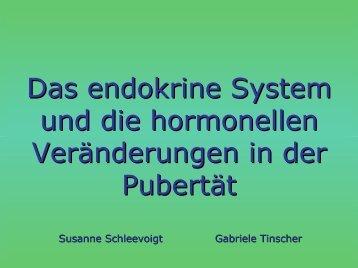 Das endokrine System und die hormonellen Veränderungen in der ...