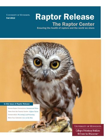 Raptor Release-Fall 2012.indd - University of Minnesota College of ...