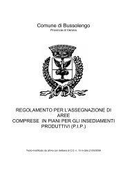 regolamento per l'assegnazione di aree comprese nel - Comune di ...
