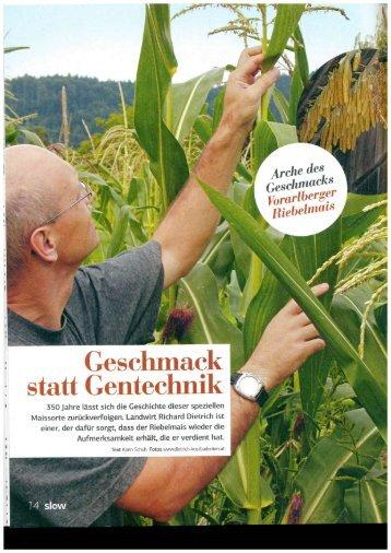 Slow Food Bericht zu Riebelmais
