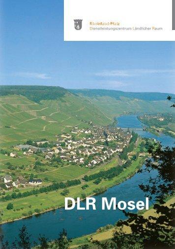 DLR Mosel