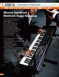 Massive Soundbank + Multitrack Digital Recording - Roland