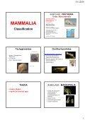 Mammals - KZR - Page 6