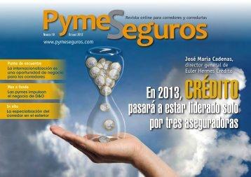 Descargar Nº 18 en PDF - PymeSeguros