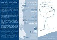 Whales - Eurobodalla