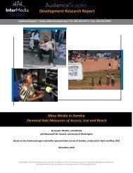 Development Research Report - AudienceScapes