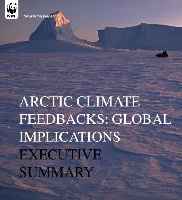 Arctic climAte FeedbAcks: GlobAl implicAtions executive summAry