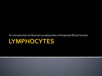 An Introduction to Normal Lymphocytes in Peripheral Blood Smears