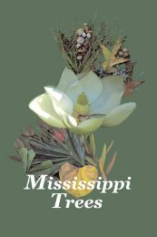 Mississippi Trees - Forest and Wildlife Research Center - Mississippi ...