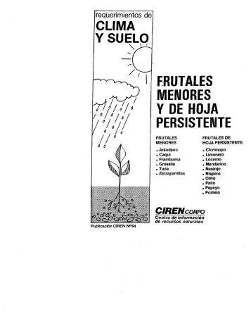 frutales de hoja persistente en chile