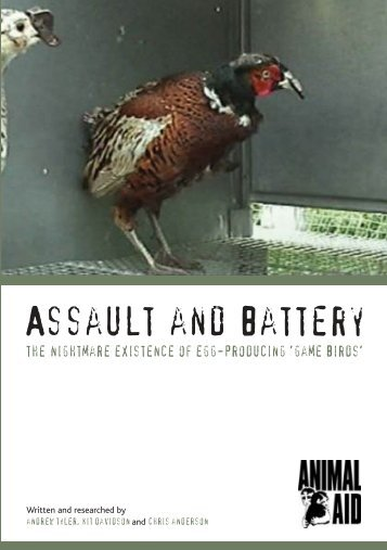 Assault and Battery - Animal Aid