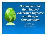 Grandville CWP Egg Shaped Anaerobic Digester and Bio-gas ...