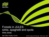 Forests in JULES: sinks, spaghetti and spots
