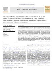 Tree size distribution at increasing spatial scales converges to the ...
