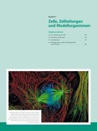 Leseprobe (pdf; 3.1 MB) - Science-Shop