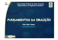 fundamentos da ebulição - LEPTEN - Universidade Federal de ...