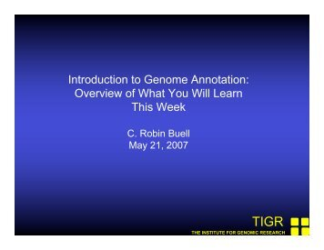 Functional Annotation - Rice Genome Annotation Project
