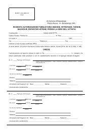 Richiesta Autorizzazione Pubblicitaria - Comune di Bussolengo