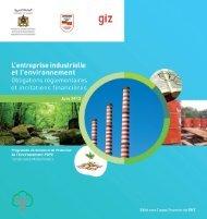 L'entreprise industrielle et l'environnement - Département de l ...